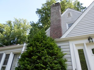 Repointed Chimney--Teaneck